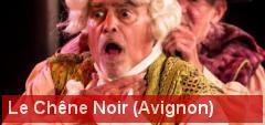 Théâtre du Chêne noir (Avignon) : une exigence permanente